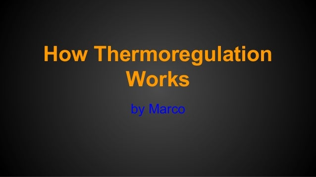 How Thermoregulation Works by Marco