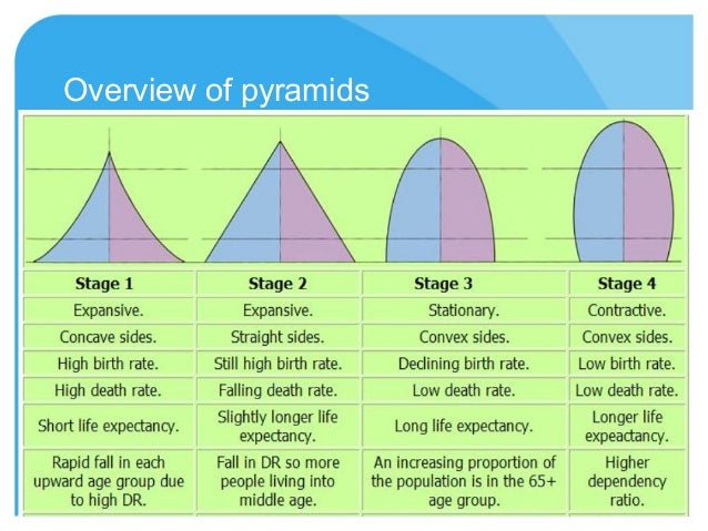 explanation of the population pyramid annotation Singapore population pyramids analysis daniel wu 8ei am analysing the  population  this could imply a number of things to explain the low fertility rate.