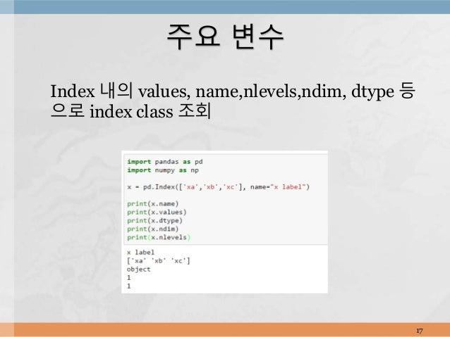 Index 내의 values, name,nlevels,ndim, dtype 등 으로 index class 조회 17 주요 변수