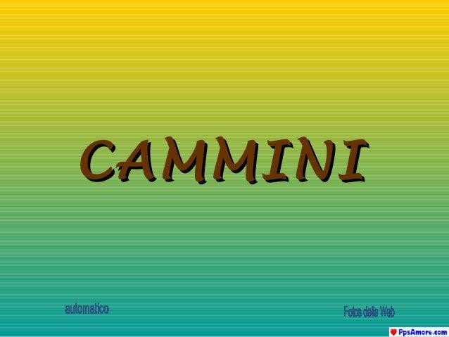 CAMMINI