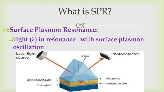 the surface plasmon resonance Surface plasmon resonance imaging (spri) has been developed as a quantitative, label-free microscopy to image real time observation of live cell engagement with the surface, and protein deposition and remodeling the spri technique is an alternative to the commonly used fluorescence microscopy for examining cell-matrix interactions.