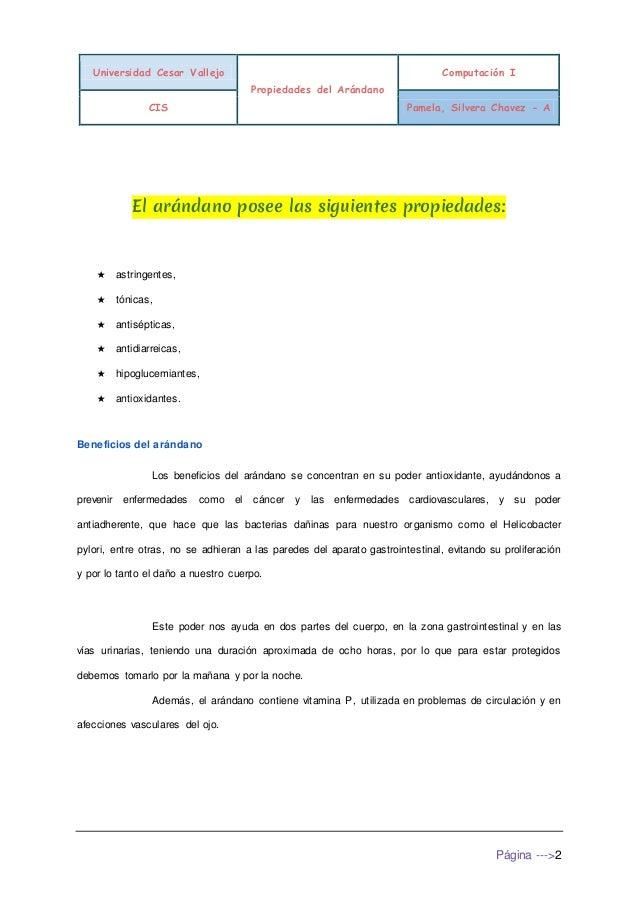 Arandano Slide 3