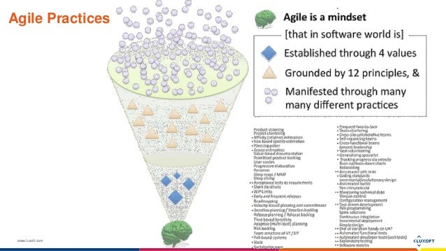 www.luxoft.com Agile Practices