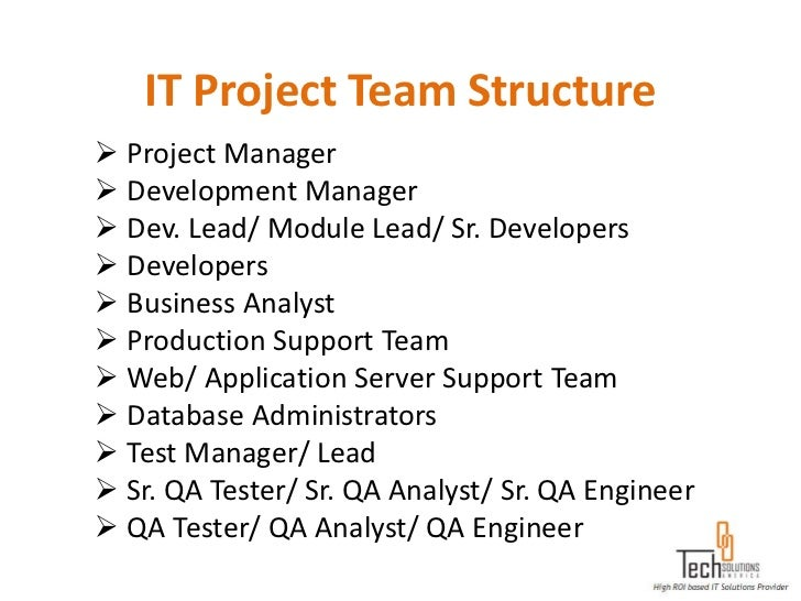 IT Project Team Structure Project Manager Development Manager Dev. Lead/ Module Lead/ Sr. Developers Developers Busin...
