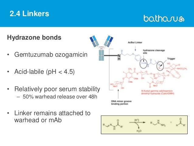 2.4 Linkers Hydrazone bonds • Gemtuzumab ozogamicin • Acid-labile (pH < 4.5) • Relatively poor serum stability – 50% warhe...