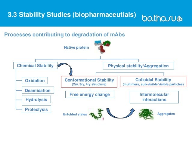 Processes contributing to degradation of mAbs Native protein Chemical Stability Physical stability/Aggregation Oxidation D...