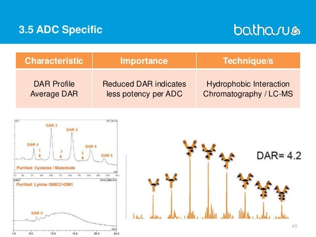 3.5 ADC Specific 40 Characteristic Importance Technique/s DAR Profile Average DAR Reduced DAR indicates less potency per A...