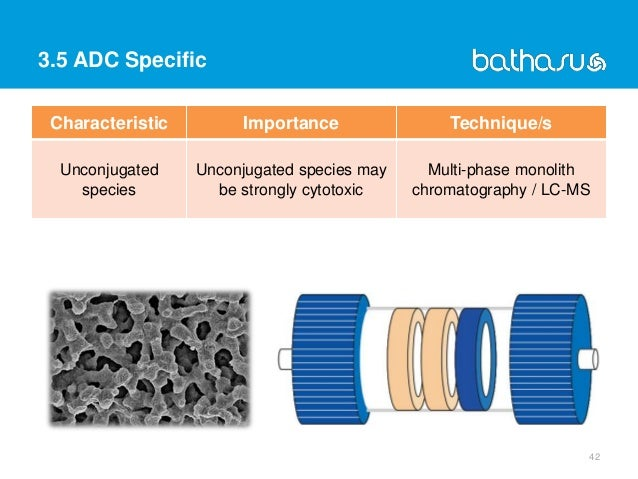 3.5 ADC Specific 42 Characteristic Importance Technique/s Unconjugated species Unconjugated species may be strongly cytoto...