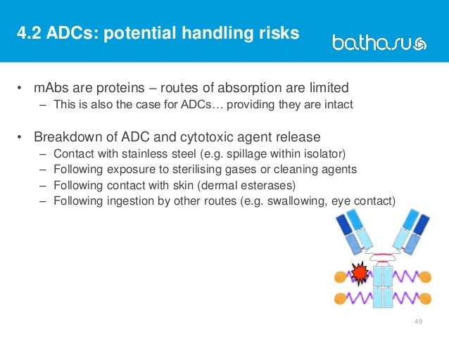 4.2 ADCs: potential handling risks • mAbs are proteins – routes of absorption are limited – This is also the case for ADCs...