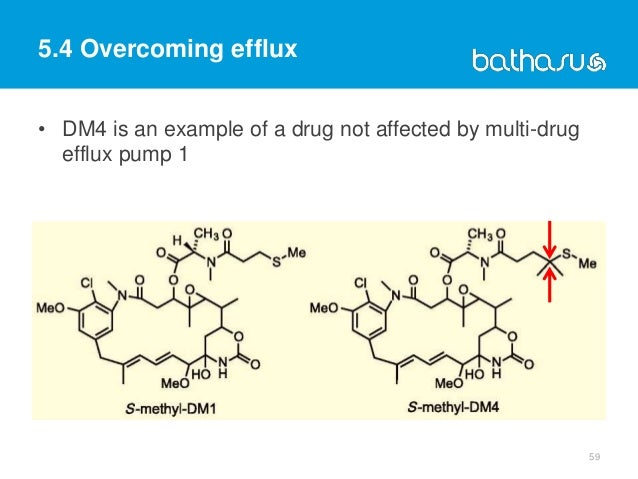 59 • DM4 is an example of a drug not affected by multi-drug efflux pump 1 5.4 Overcoming efflux