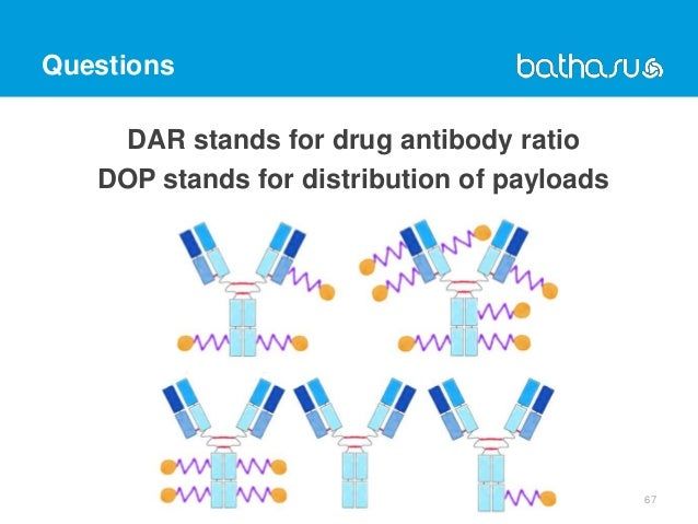 Questions DAR stands for drug antibody ratio DOP stands for distribution of payloads 67