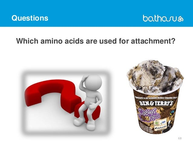 Questions Which amino acids are used for attachment? 68