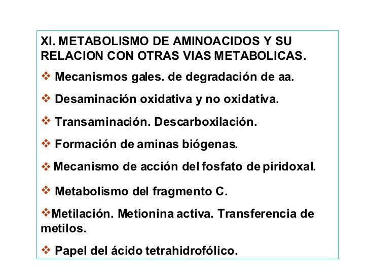 <ul><li>XI. METABOLISMO DE AMINOACIDOS Y SU RELACION CON OTRAS VIAS METABOLICAS. </li></ul><ul><li>Mecanismos gales. de de...