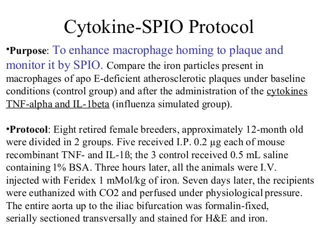 Cytokine-SPIO Protocol •Purpose: To enhance macrophage homing to plaque and monitor it by SPIO. Compare the iron particles...