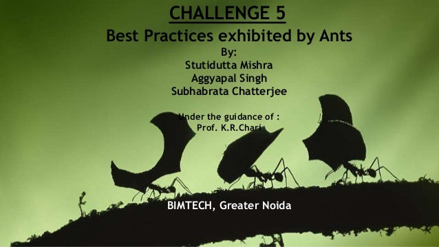 CHALLENGE 5 Best Practices exhibited by Ants By: Stutidutta Mishra Aggyapal Singh Subhabrata Chatterjee Under the guidance...