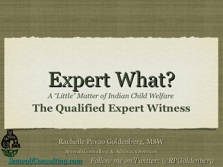 """Expert What? <ul><li>A  """" Little """"  Matter of Indian Child Welfare  </li></ul><ul><li>The Qualified Expert Witness </li></..."""