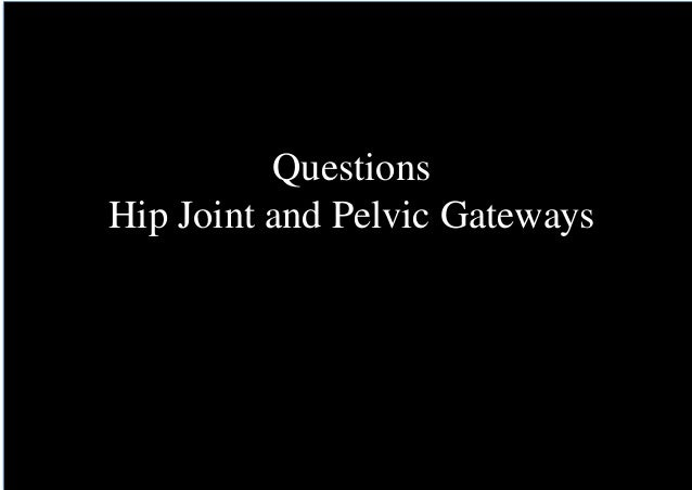 Questions Hip Joint and Pelvic Gateways