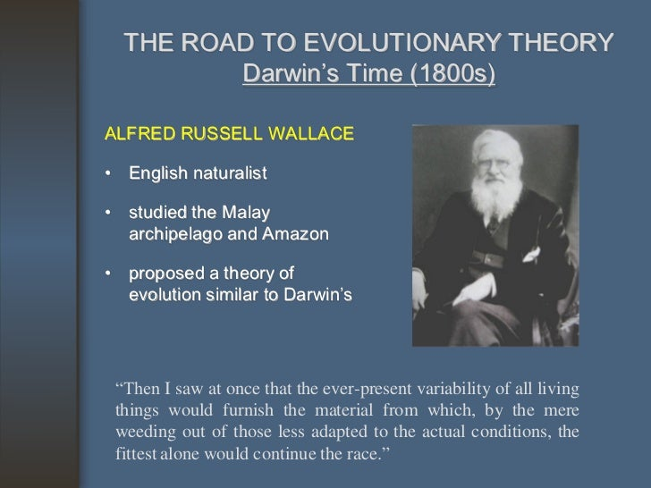 the theory of evolution before charles darwins proposal Brief history of evolutionary theory before darwin gradual evolution of physical system charles bonnet.