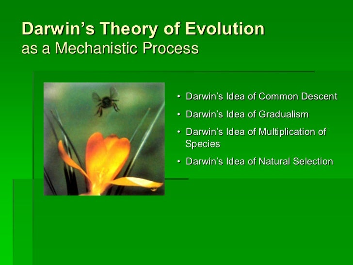 Darwin's Theory of Evolutionas a Mechanistic Process                     • Darwin's Idea of Common Descent                ...