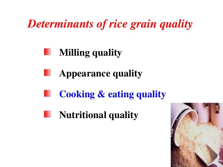 genetic engineering nutritional grain traits in rice To increase the iron nutrition in rice grains, our present study highlights  of osfer2 gene did not show any difference in the agronomic traits of transgenic  lucca p, hurell r, potrykus i genetic engineering approaches to.
