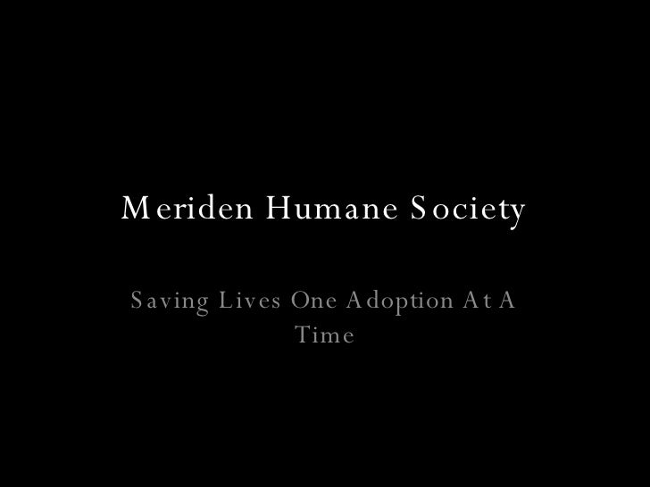 Meriden Humane Society Saving Lives One Adoption At A Time