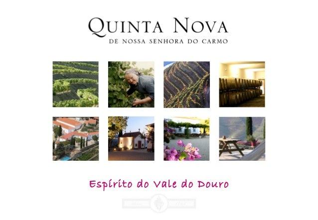 Espírito do Vale do Douro