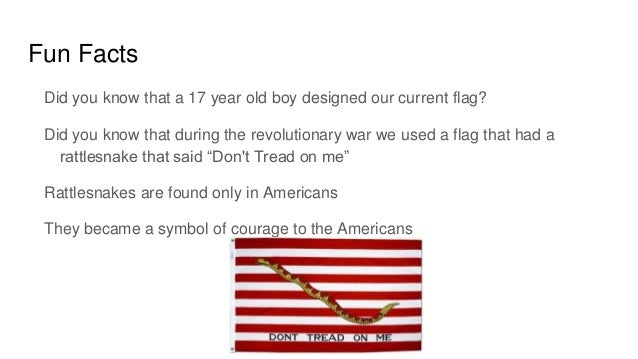 American flag for Interesting fact about america