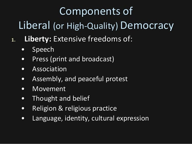 political participation in liberal democracy American political attitudes and participation democracy, liberty, equality are you liberal or conservative.