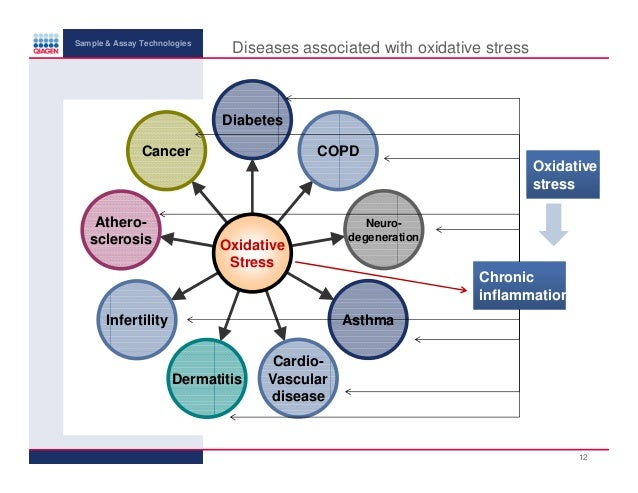 relationship between oxidative stress and diabetes