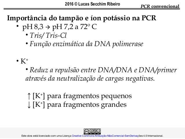 Importância do tampão e íon potássio na PCR • pH 8,3  pH 7,2 a 72º C • Tris/ Tris-Cl • Função enzimática da DNA polimeras...