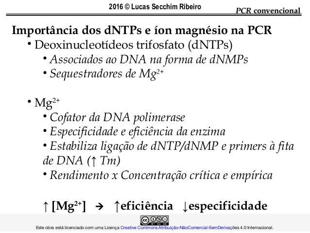 Importância dos dNTPs e íon magnésio na PCR • Deoxinucleotídeos trifosfato (dNTPs) • Associados ao DNA na forma de dNMPs •...