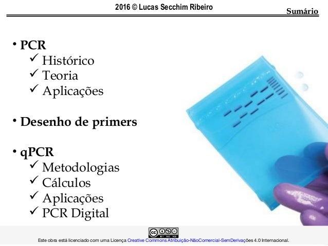 SumárioSumário • PCR  Histórico  Teoria  Aplicações • Desenho de primers • qPCR  Metodologias  Cálculos  Aplicações ...
