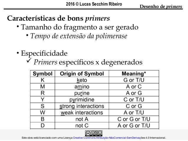 Características de bons primers • Tamanho do fragmento a ser gerado • Tempo de extensão da polimerase • Especificidade  P...