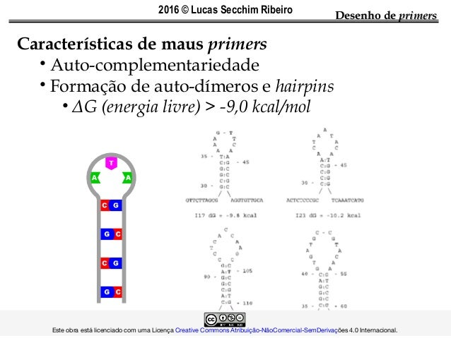 Características de maus primers • Auto-complementariedade • Formação de auto-dímeros e hairpins • ΔG (energia livre) > -9,...
