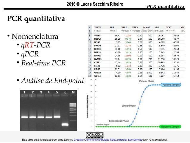PCRPCR quantitativaquantitativa PCR quantitativa • Nomenclatura • qRT-PCR • qPCR • Real-time PCR • Análise de End-point ...