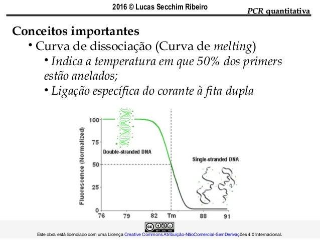 Conceitos importantes • Curva de dissociação (Curva de melting) • Indica a temperatura em que 50% dos primers estão anelad...