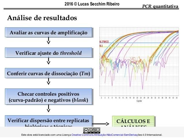 CÁLCULOS E ANÁLISES CÁLCULOS E ANÁLISES Verificar dispersão entre replicatas biológicas e técnicas Verificar dispersão ent...