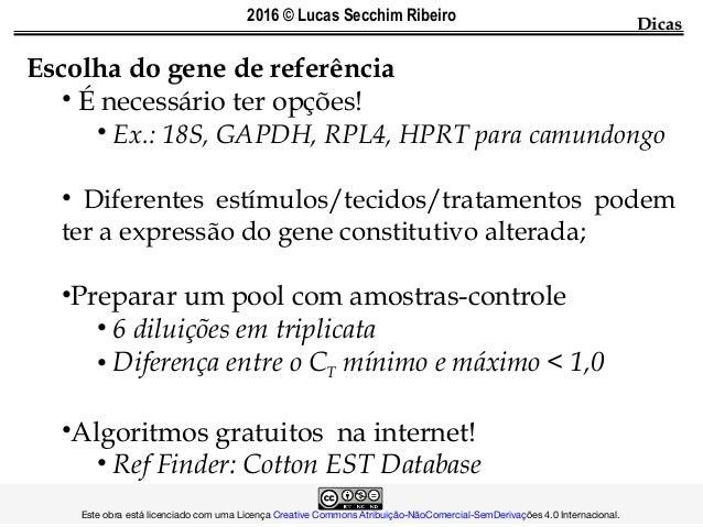 Escolha do gene de referência • É necessário ter opções! • Ex.: 18S, GAPDH, RPL4, HPRT para camundongo • Diferentes estímu...