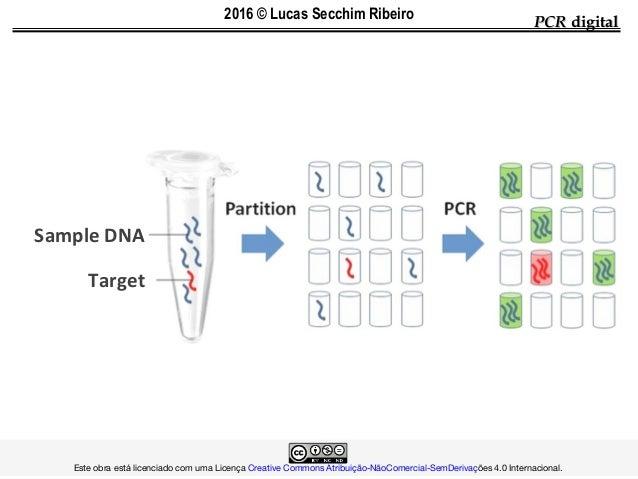 PCRPCR digitaldigital Sample DNA Target  Este obra está licenciado com uma LicençaCreative Common...