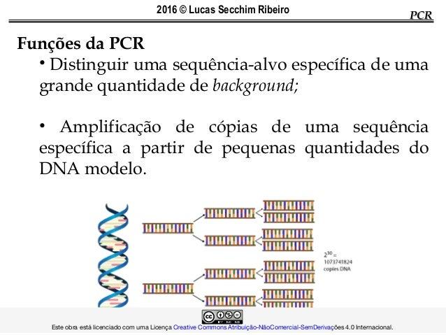 PCRPCR Funções da PCR • Distinguir uma sequência-alvo específica de uma grande quantidade de background; • Amplificação de...