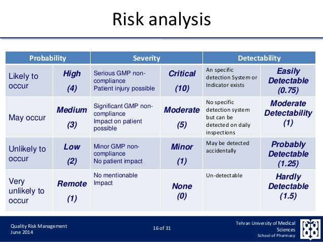 Qualitative Risk Analysis  BesikEightyCo