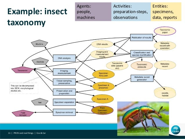 Example: insect taxonomy PROV and real things | Cox & Car11 | Entities: specimens, data, reports Agents: people, machines ...