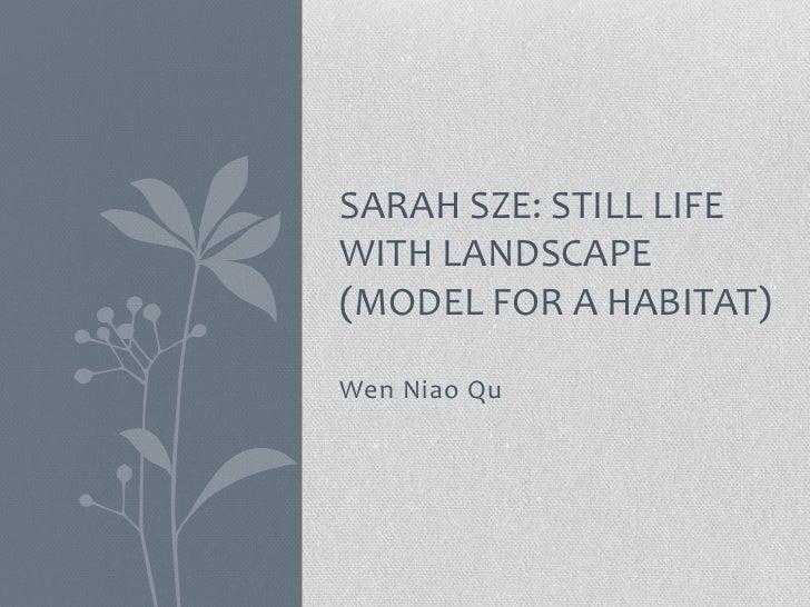 SARAH SZE: STILL LIFEWITH LANDSCAPE(MODEL FOR A HABITAT)Wen Niao Qu