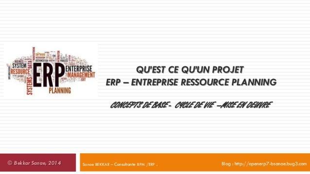 Qu est ce qu un projet erp entreprise resource planning - Qu est ce qu un igloo ...