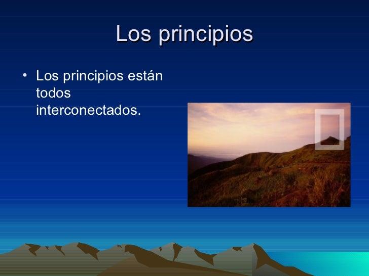 Los principios <ul><li>Los principios están todos interconectados. </li></ul>