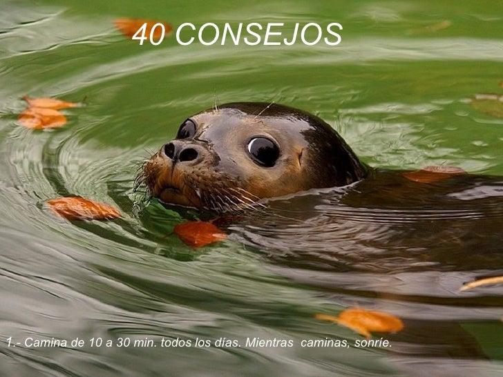 40 CONSEJOS   1 .- Camina de 10 a 30 min. todos los días. Mientras  caminas, sonríe.