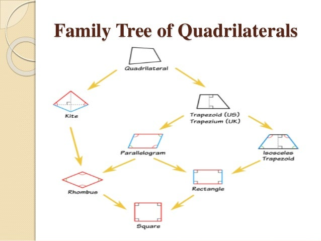 Quadrilateral family tree diagram circuit connection diagram quadrilaterals rh slideshare net quadrilateral family tree project venn diagram quadrilateral family tree story ccuart Image collections