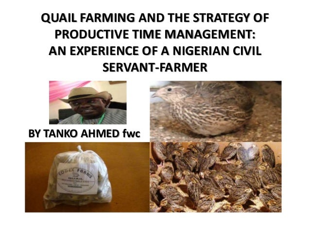 QUAIL FARMING AND THE STRATEGY OF PRODUCTIVE TIME MANAGEMENT: AN EXPERIENCE OF A NIGERIAN CIVIL SERVANT-FARMER BY TANKO AH...