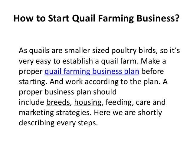 webequity farm business plan