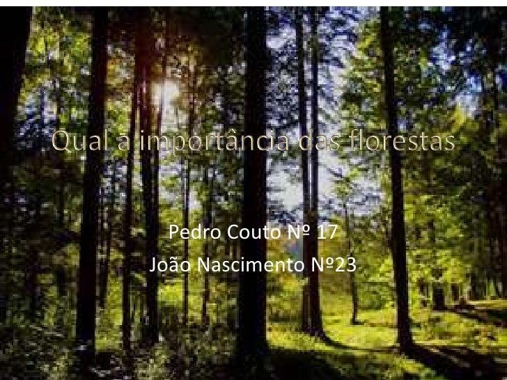 Qual a importância das florestas<br />Pedro Couto Nº 17 <br />João Nascimento Nº23<br />